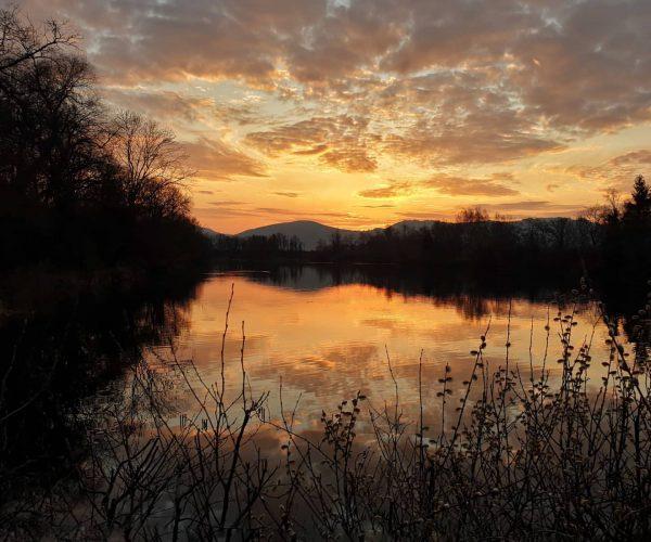 Der Sonnenuntergang heute ließ mal wieder keine Wünsche offen! Diesen Moment habe ich am Alten Rhein eingefangen,...
