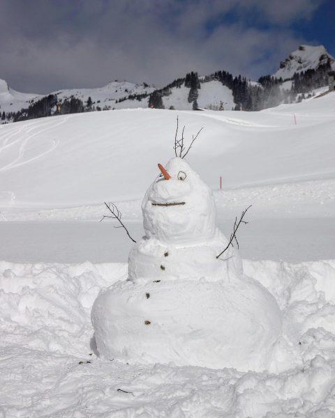 Leider müssen die Skigebiete aufgrund des Coronavirus dieses Jahr vorzeitig schließen - somit ...