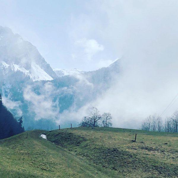 Kopf frei laufen und tief einatmen ❤️❤️❤️❤️ #naturelover #mountainlove #mountainlovers #meinmontafon #freiatmen #frischeluft ...
