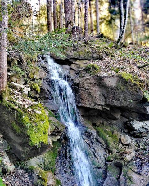 #bregenzerwald #visitvorarlberg #vorarlberg #visitbregenzerwald #home #magic #mountains #mylove #mylife #wasserfall #waterfall # #stayhome ...