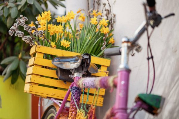 Bycycles can also be very decorative 🚲🌼⬇️. . Spring has officially started 💐. ...