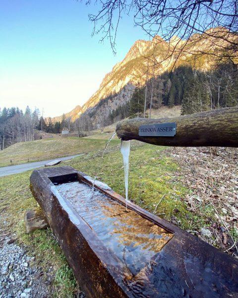 Wunderbare Natur - kleiner Spaziergang fürs Gemüt ☺️ ansonsten gilt #bleibtzuhause 💪🏼 #frischeluft ...