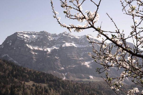So langsam erwacht der Frühling in Bezau 🌱 die Sonne scheint, die Temperaturen ...
