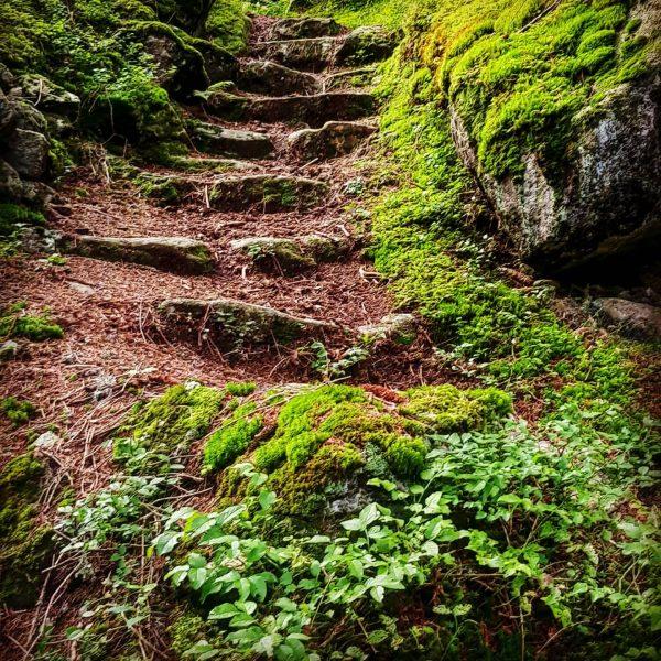 #montafon #partenen #breitspitz #vorarlberg #stiege #austria #wandern #hike #aufstieg Partenen, Vorarlberg, Austria