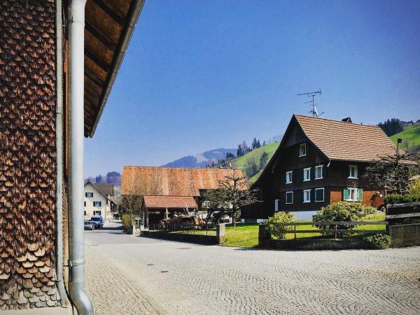 #hatlerdorf #morningrun 🏃♀️ #10k #dornbirn #running #sports #village #oldtown #sushine #bluesky #spring #wonderful ...