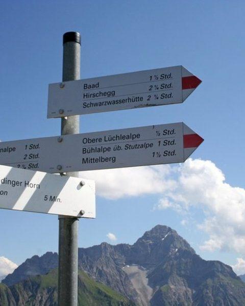 Richtungs- und Zeitangaben... Derzeit weiß niemand so genau wo es hingehen wird. 🌿Dennoch ...