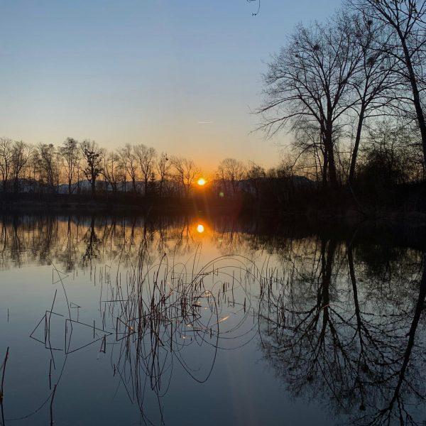 #alterrhein #oldrhine #sonnenuntergang #sunset ...