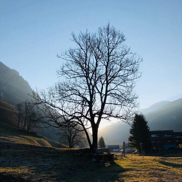 #stayathome #becare #klösterle #walking #gesundheit #alleswirdgut #zusammenhalt #wochenende #nature #dorfleben # Klösterle, Vorarlberg, ...