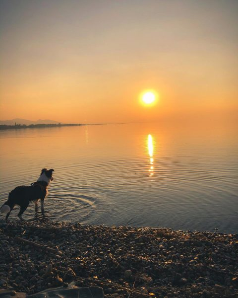 Watching a sunset with my best friend is perfection, a moment of pure ...