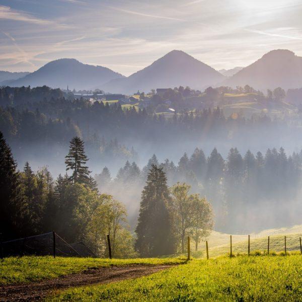 Inmitten einer einzigartigen Naturlandschaft #mesmerhaus #bildstein #bodensee #lakeofconstance #vorarlberg #austria #urlaubsapartments #ambiente #design ...