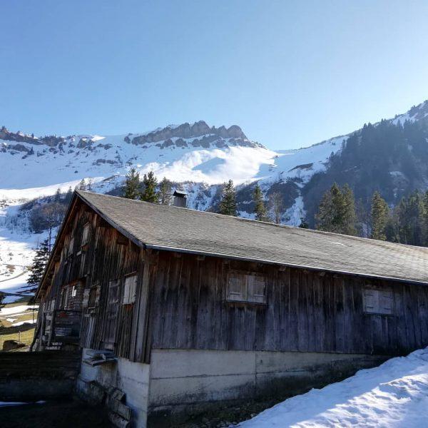 Anna war gestern auf Erkundungstour in den Schetteregger Bergen - Ein schöner Wander-Tipp ...