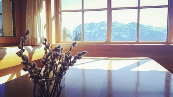 🏔☀️ • #berghofbezau #bezau #sonderdachbezau #sonderdach #bregenzerwald #vorarlberg #österreich #europa #visitbezau #visitsonderdach #visitbregenzerwald ...