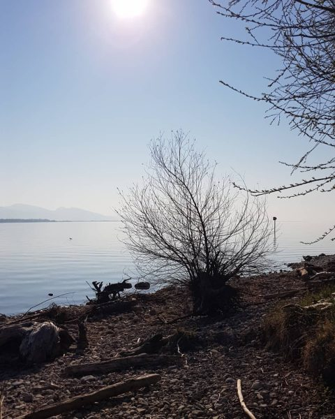 Silence 👂 . #bregenz #vorarlberg #austria #bodensee #lakeconstance #lake #sky #april #see #nature #discoveraustria #naturephotography #photooftheday #travelgram...