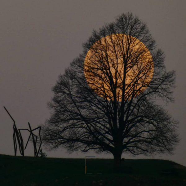 ☆S U P E R M O O N☆ #moon #moonnight #mond #vollmond ...