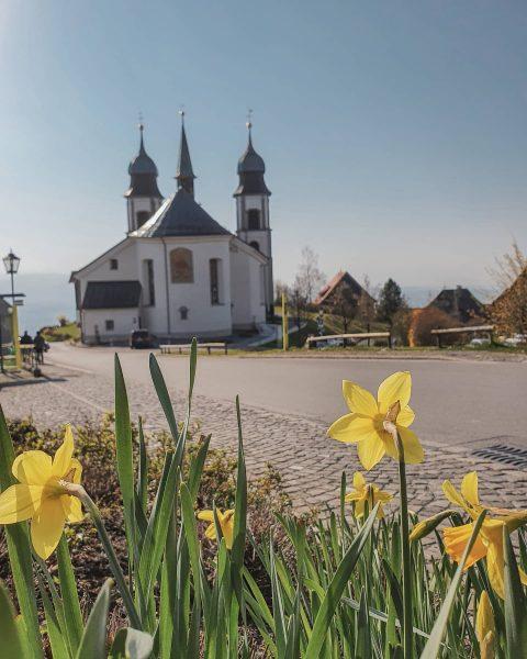 Wir schicken österliche Grüße von der Basilika Maria Bildstein 💒🐰💐⬇️. . Mit ihrer ...