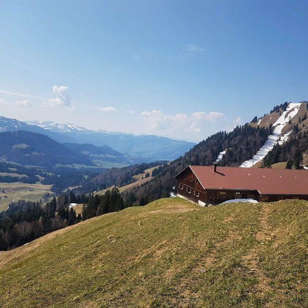 """""""Von den Alpen ⛰ unserer Heumilchbauern"""" Noch ist es ziemlich ruhig auf der ..."""