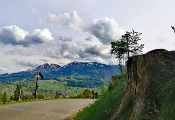 #bregenzerwald #visitvorarlberg #vorarlberg #visitbregenzerwald #home #magic #mountains #mylife #frühling #flowers #homesweethome #placetovisit #placetogo ...