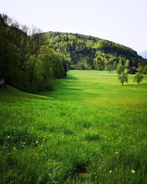 One of my favorite places... 🥰 #calmdown #starbogast #lebeningötzis #morgenrunde #tragebaby #ruhe #entspannung ...