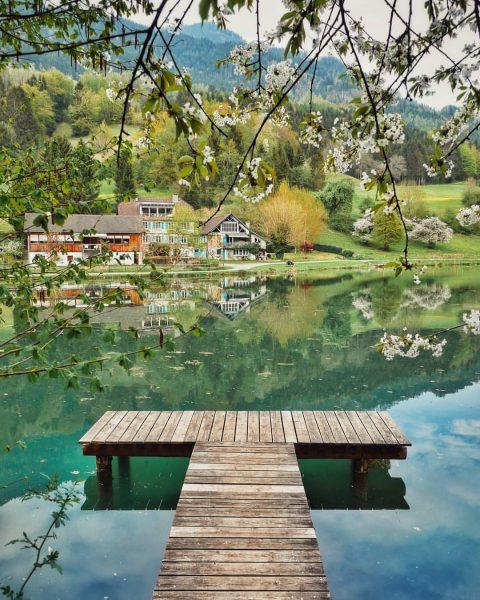 🏞️ . . . #schnifis #vorarlberg #visitvorarlberg #lake #spring #austria #visitaustria #österreich #frühling #primavera #green #verde #meinvorarlberg...