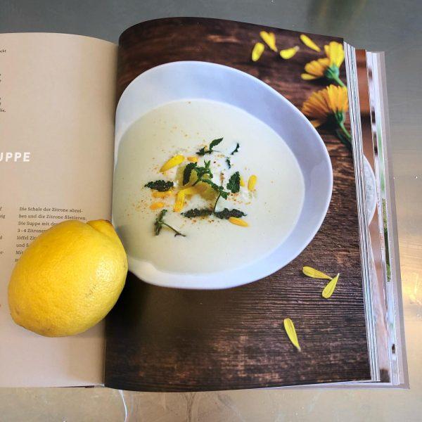 Saftig und aromatisch - Zitronen haben jetzt ihre beste Zeit. Unsere sind von ...