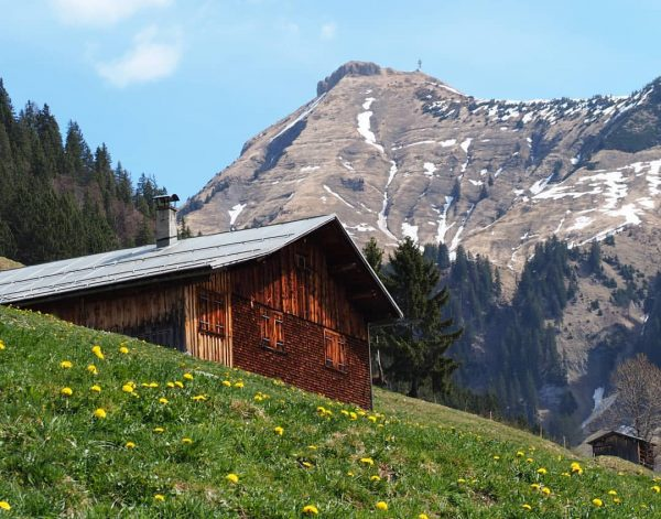 Au Bregenzerwald Blick Hütte vor dem Diedamskopf #aubregenzerwald #bregenzerwald #diedamskopf #neverstopexploring #liveatitsbest #whataview ...