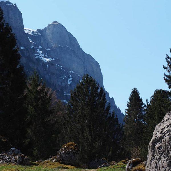 Bühlenvorsäß unter der Kanisfluh #nofilter #bregenzerwald #visitvorarlberg #visitbregenzerwald #mellau #vorarlberg #Frühling #kanisfluh #berge ...