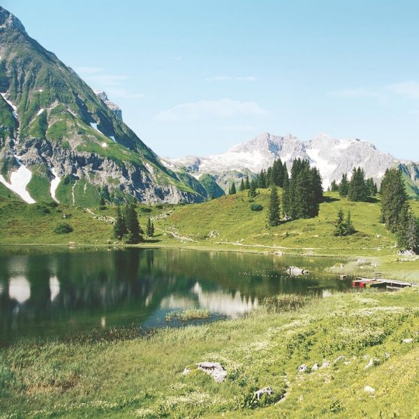 Here's some of our favourite reasons to go hiking in Austria's Bregenzerwald region: ...