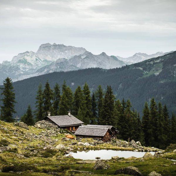 Vom Grasjoch über die Alpe Guess ins Silbertal und zurück nach Schruns. Murmeltiere gibts dort am Weg...