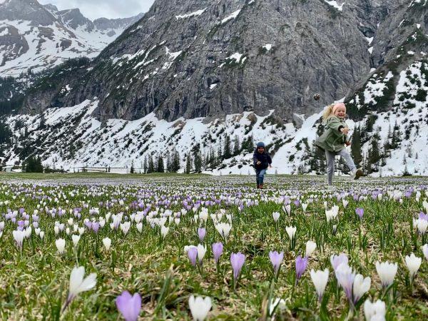 Tun wir es der Natur gleich und stehen immer wieder auf, in der Aufgabe, das Gute zum...