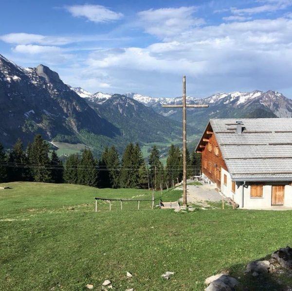 In den kommenden Tagen/Wochen sind die vielen Landwirte der KäseStrasse Bregenzerwald schon auf ...