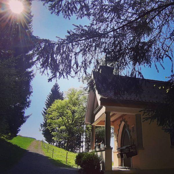 #visitvorarlberg #austria_official #best_moments_nature #ww_natura #meteorgarden #ig_amazingnature #total_meteo_ #be_one_natura #ig_nature_naturally #planetoutside #bestpicturesgallery #world_photo_shots #igbest_shotz ...