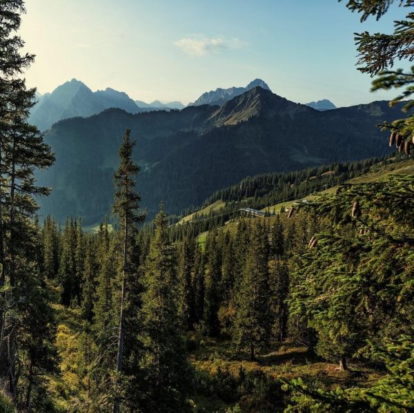 Wir sind verliebt 💘 BERGVERLIEBT #naturelover #mountainlover #sommer #bergliebe #outdoor #hüttenurlaub #auenhütte #Ifen ...