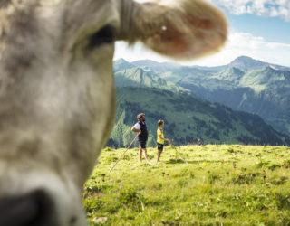 Min Weag - Vorarlberg umwandern
