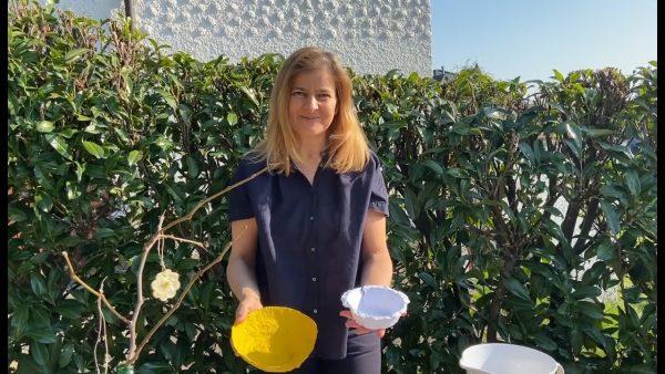 KUB Kunstvermittlung Online mit Christa Bohle