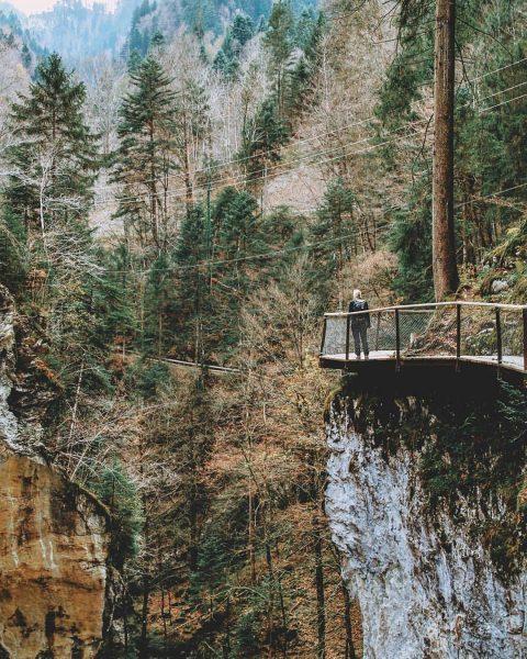 Die Rappenloch- und Alplochschlucht sind seit heute wieder begehbar. 🥰🥳 #6850dornbirn #dornbirn #visitvorarlberg ...