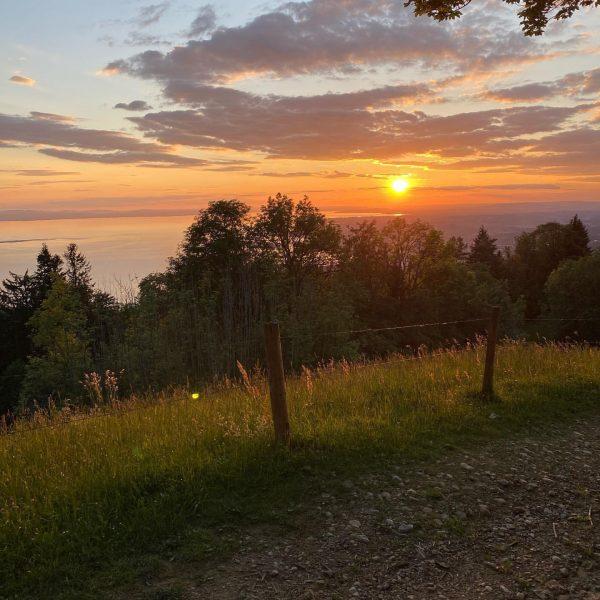 #sunsetlover #bodensee #mtbtour #pfänder #lakeofconstance #venividivorarlberg #orangeismyfavouritelight Bregenz Bodensee