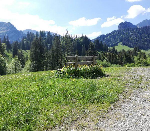 Wanderung von Sibratsgfäll nach Schönebach 😍🌺🌱🌳 ----------------------------------------------------- #hobby #hiking #hiking_hobby #nature #photographys #naturephotography ...