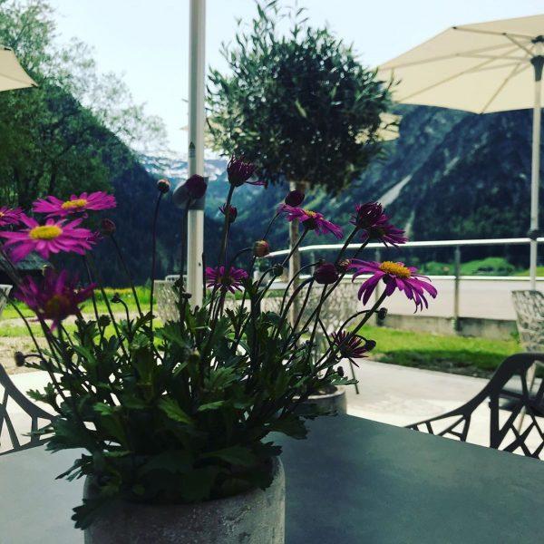 #kleinundfein #boutiquehotel #sonnenterrasse #besterkaffee #kleinwalsertal #gutgehenlassen Haller's Boutique-Hotel