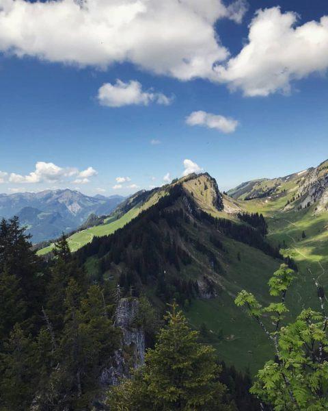 Ausblick ⛰ Sienspitze (1600m) . Die kurze aber knackige Wanderung auf die Sienspitze ...