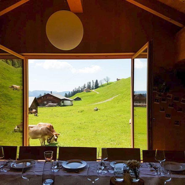Unserer Seminarraum bietet genügend Platz für kleinere Feiern 🥂 • #berghofbezau #bezau #bregenzerwald ...