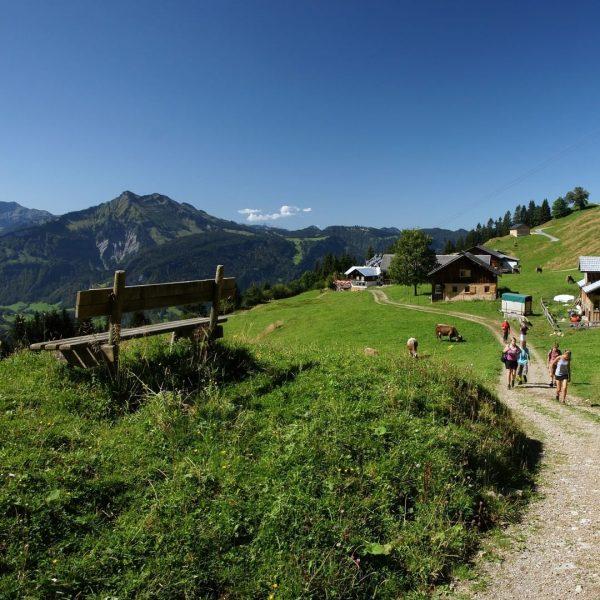 Die Seilbahnen der KäseStrasse Bregenzerwald starten in die Sommersaison und wir wünschen allen ...