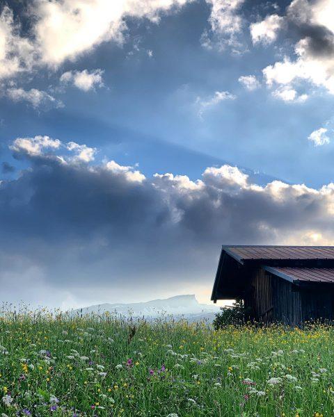 Ich kam. Ich sah. Den Bergfrühling. Unglaublich wie schön die Natur sich zu dieser Jahreszeit zeigt. #nofilter...