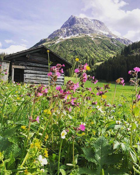 Am Lechweg mit Blick auf's Omeshorn #auroralech #bergefürdieseele #venividivorarlberg #visitvorarlberg #lechweg #visitaustria #holiday ...