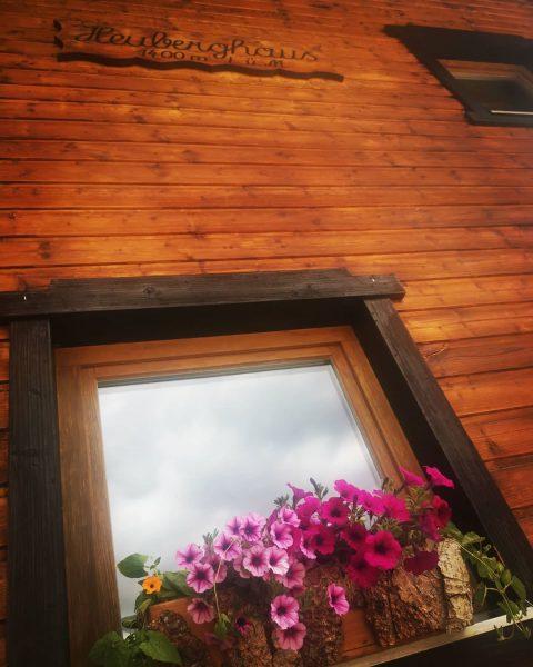 #venividivorarlberg #heuberghaus1400m #oberallgäu #visitaustria #visitvorarlberg #okbergbahnen #Kleinwalsertal #vorarlberg #vorfreude #austria #esistsoweit Ich kam. Ich sah. Meinen Bergfrühling....