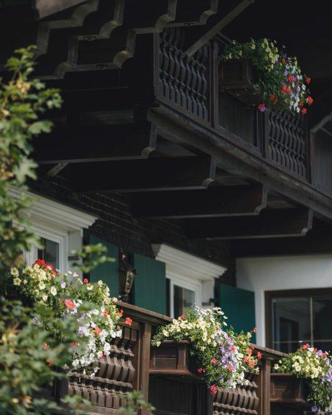 So schön kann Sommer sein 🌼 . . . #Alpengarten #Bergsommer #geduldistnichtunserestärke #SommerSaison ...