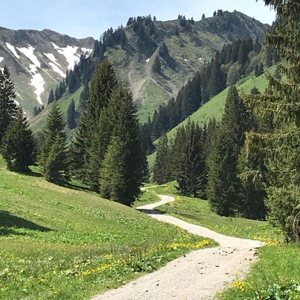 Ne Tour Richtung Günt'i Spitze bei besten Wetter und Mega Aussicht . #wanderlust ...
