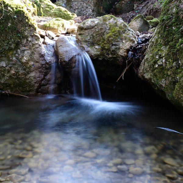 #visitbregenz #meinvorarlberg #unservorarlberg #bodenseevorarlberg #photography #myvorarlberg #photographer #bodenseepics #lakelove #bregenz #bodensee #bodenseepage #seeliebe ...