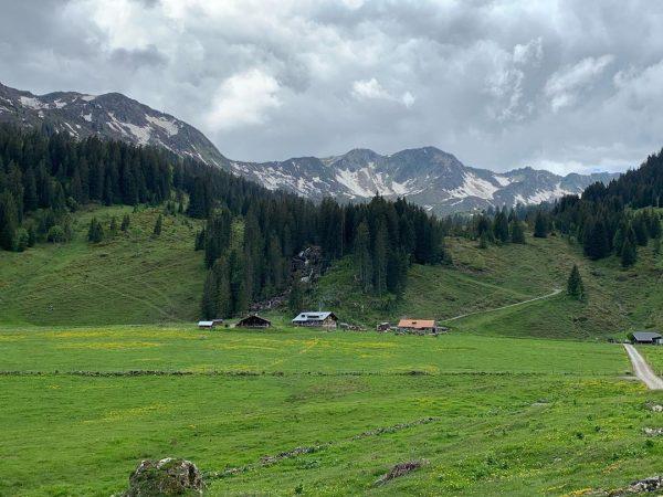 it's all about Nature 😘... #natur #kleinwalsertal #melköde #austria🇦🇹 ... [advertising unpaid] Alpe Melköde