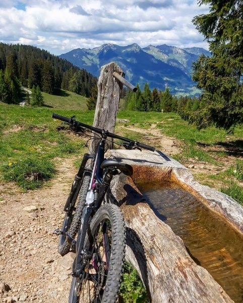Genußtour am Bürserberg 😊 . . #vorarlberg #brandnertal #nature #landscape #austria #mountains #mtb ...