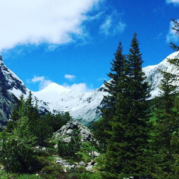 frisch verschneite berggipfel ❄️ #öfapass #schnee #lindauerhütte #montafon